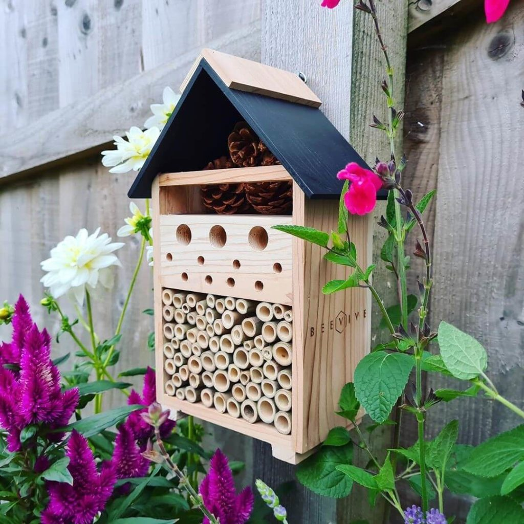 migliore-casa-per-insetti