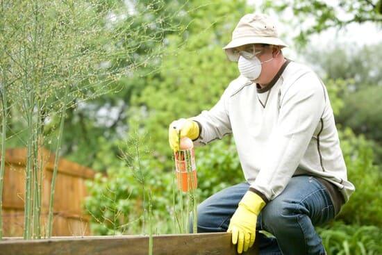 Fertilizzante-organico-o-fertilizzante-trattato