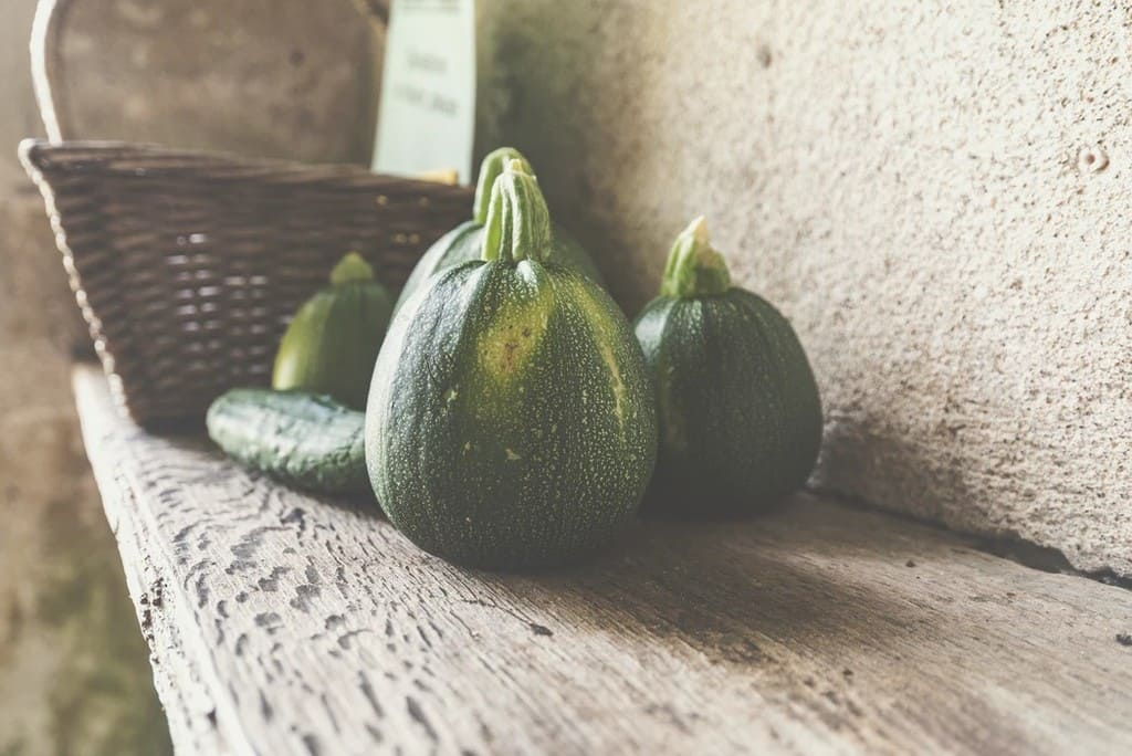 Quando-trapiantare-le-zucchine