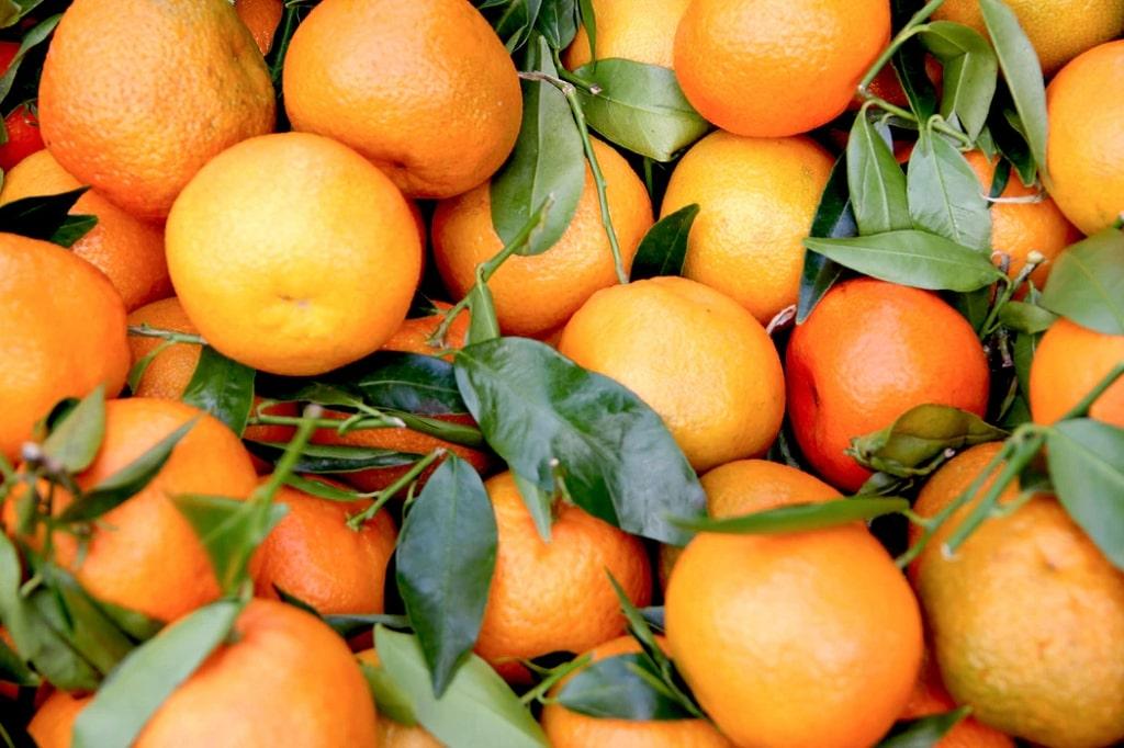 Arancia-frutta-di-stagione-gennaio