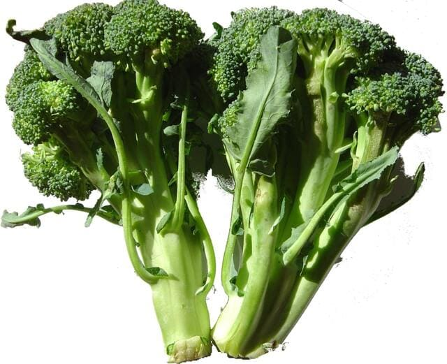Broccoletti-verdura-di-stagione-di-dicembre