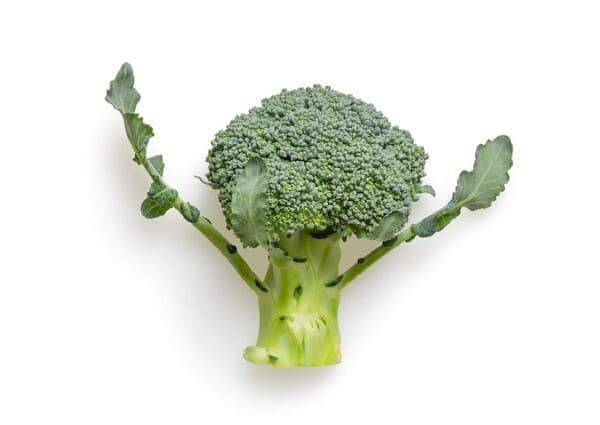 Broccoli-verdure-di-stagione-a-marzo