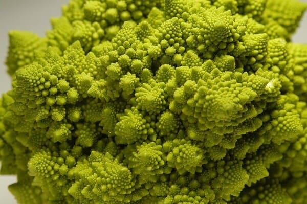Broccolo-romanesco-verdura-di-stagione-a-gennaio