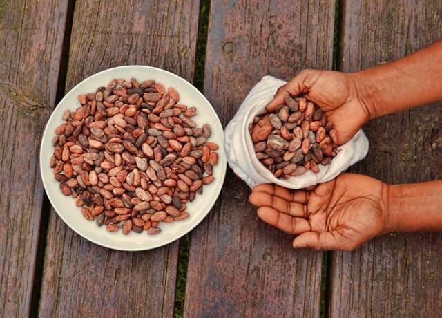 Cacao-frutta-a-guscio