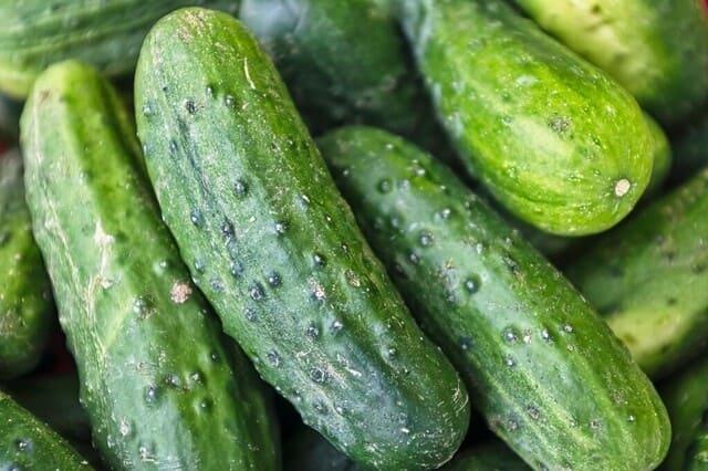Cetrioli-verdura-di-stagione-a-giugno