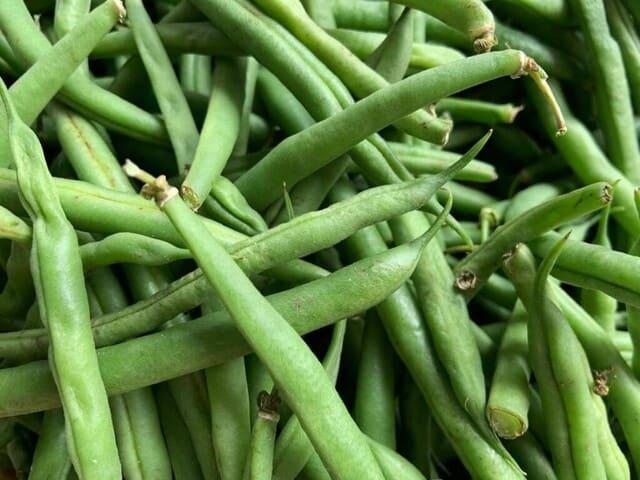 Fagiolini-verdura-di-stagione-a-giugno