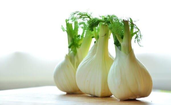 Finocchi-verdura-di-stagione-a-gennaio