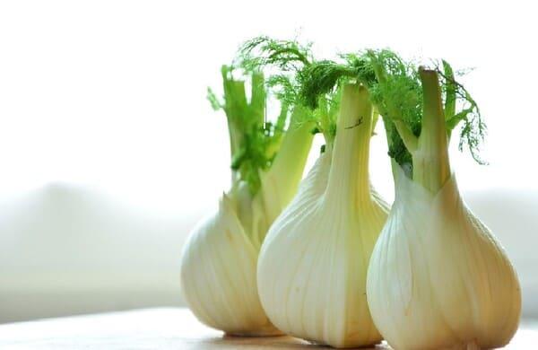 Finocchi-verdure-di-stagione-a-marzo