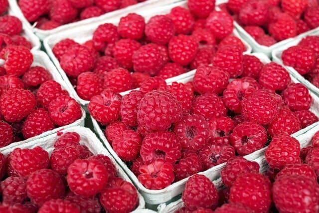 Frutta-autunnale-Lamponi