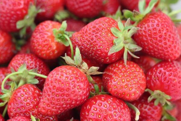 Frutta-con-la-F-Fragola