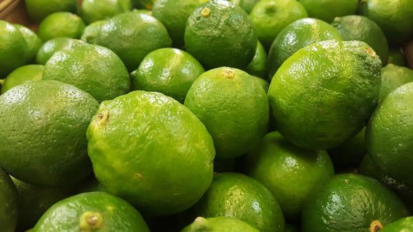 Lime-frutta-di-stagione-di-agosto