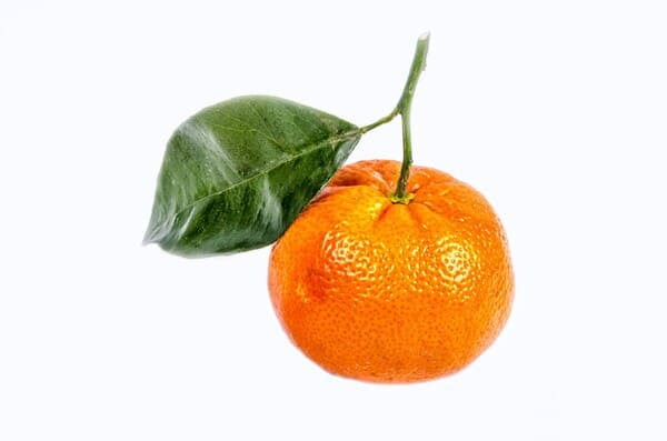 Mandarino-frutta-di-stagione-di-novembre