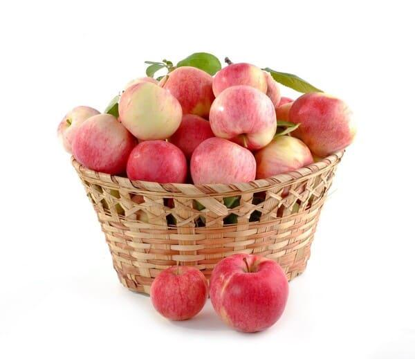 Mela-frutta-di-stagione-a-ottobre