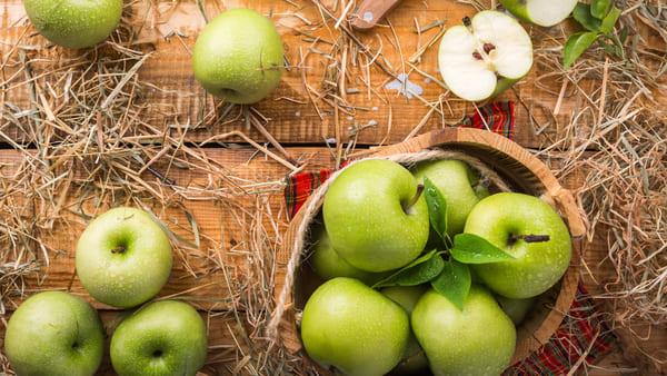 Mela-frutta-di-stagione-di-novembre
