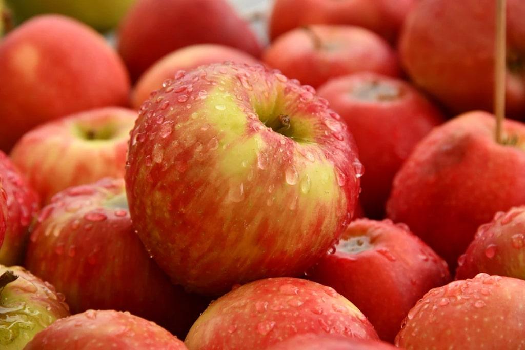 Mela-frutta-di-stagione-gennaio