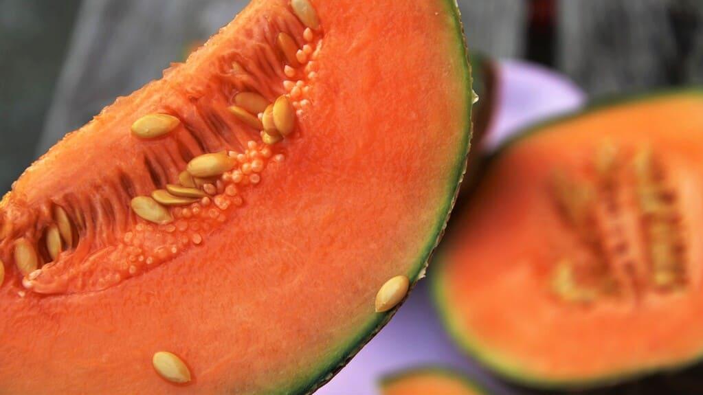 Melone-frutta-o-verdura
