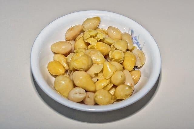 Noci-di-ginkgo-frutta-a-guscio