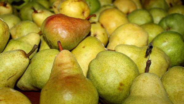 Pera-frutta-di-marzo