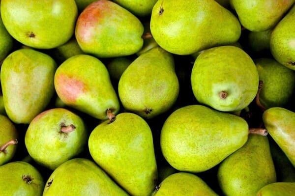 Pera-frutta-di-stagione-a-ottobre