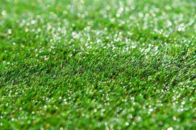 Perche-scegliere-erba-sintetica