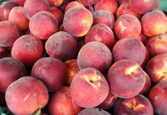 Pesche-Frutta-di-stagione-di-luglio