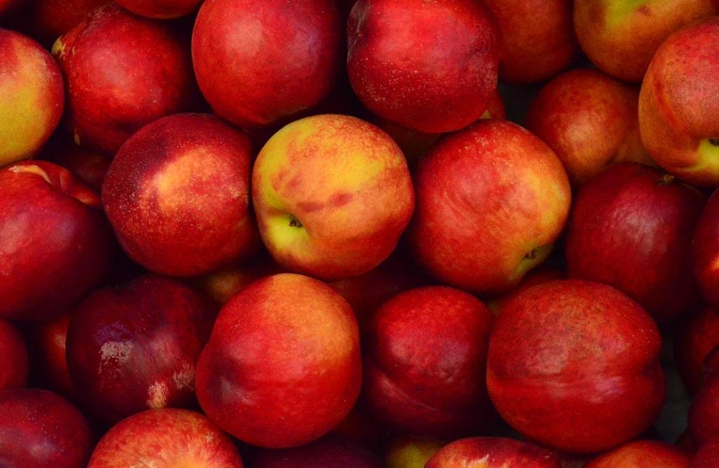 Pesche-frutta-di-stagione-giugno