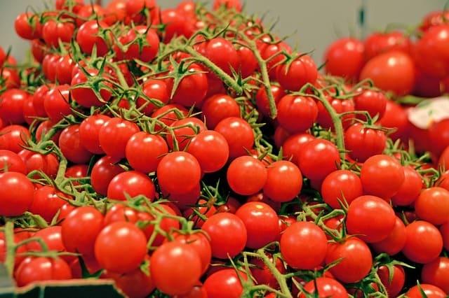 Pomodori-verdura-di-stagione-di-dicembre