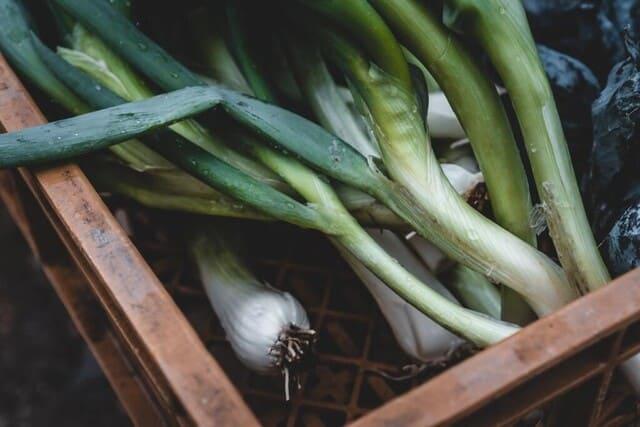 Porri-verdura-di-stagione-a-giugno