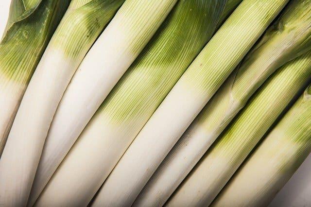 Porri-verdura-di-stagione-di-novembre