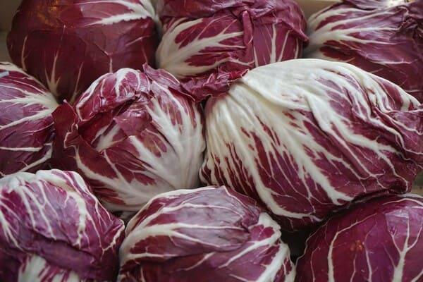 Radicchio-rosso-verdura-di-stagione-a-gennaio