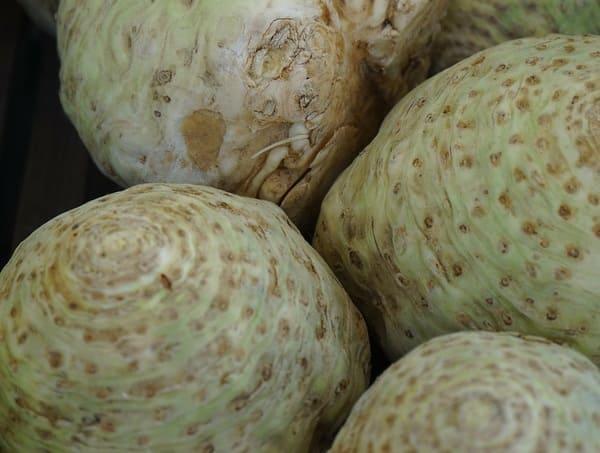 Sedano-rapa-verdura-di-stagione-di-febbraio