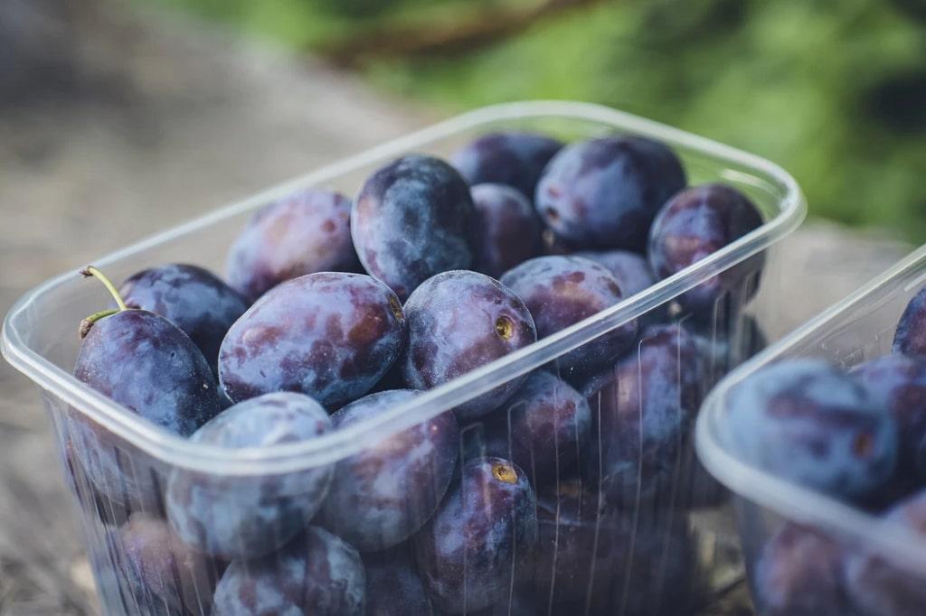 Susine-o-prugne-frutta-di-stagione-giugno