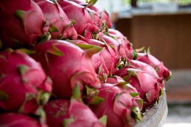 frutto-del-drago-o-pitaya