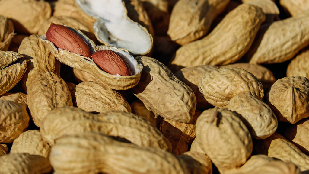 tipi-di-arachidi-piu-famose