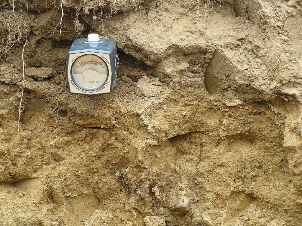Come-misurare-il-pH-del-terreno